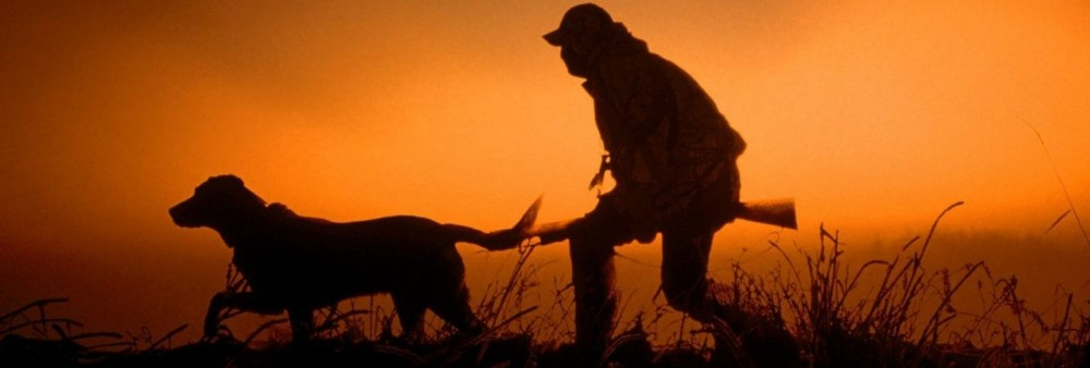 Ногинское районное общество охотников и рыболовов (НРООиР)
